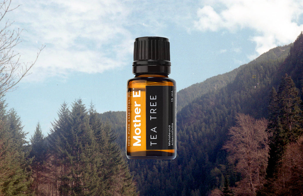TEA TREE ESSENTIAL OIL with landscape mountains and forest