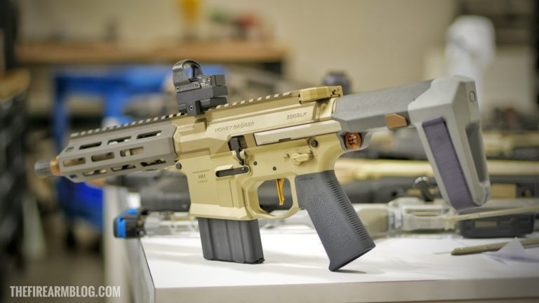 (The Firearm Blog ) BRACE YOURSELF: Q Honey Badger Pistol With Brace - April 2018