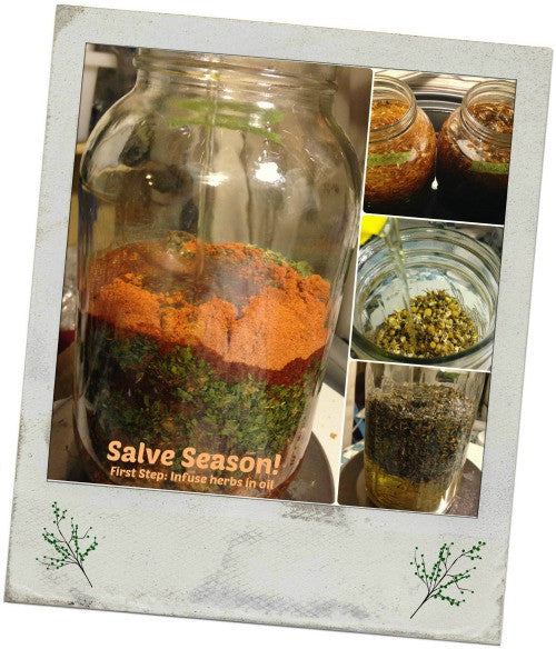 Salve Season, get infusing!