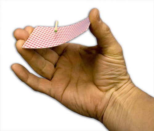 Floating Match on Card - Bee