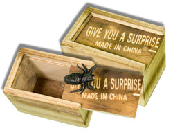 Boxed Bug - Wooden Box
