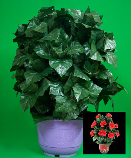 Blooming Rose Bush - R/C - 30 Flowers