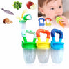 Fresh Food Teether - Pack of 2