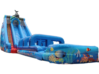25'H Coral Crush Water Slide & Slip N Slide