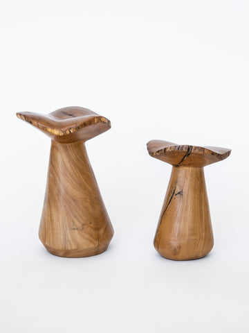 Vintage Wood Mushrooms