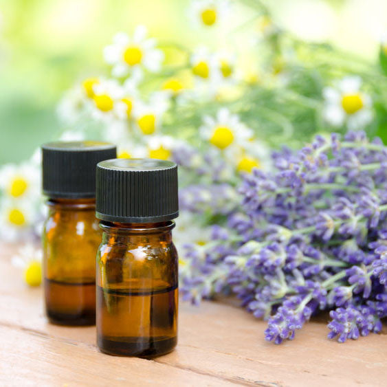 10 Essential Oil Blends for a Wonderfully Aromatic Holiday Season