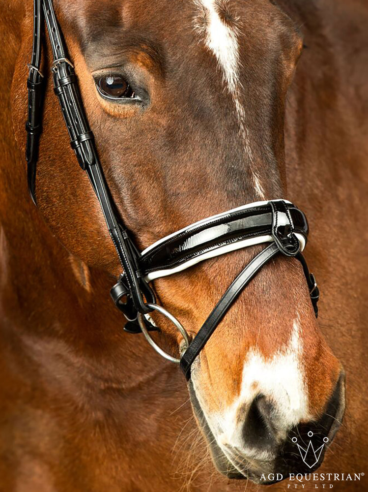 Customised AGD Dressage | B&W Patent | Padded Brow