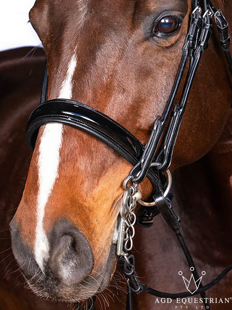 Rolled Cavesson Noseband | Black | Patent | Silver