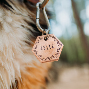14ers- Simple Style - Copper Paws Dog Tags