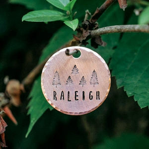 Hiker- Simple Style - Copper Paws Dog Tags