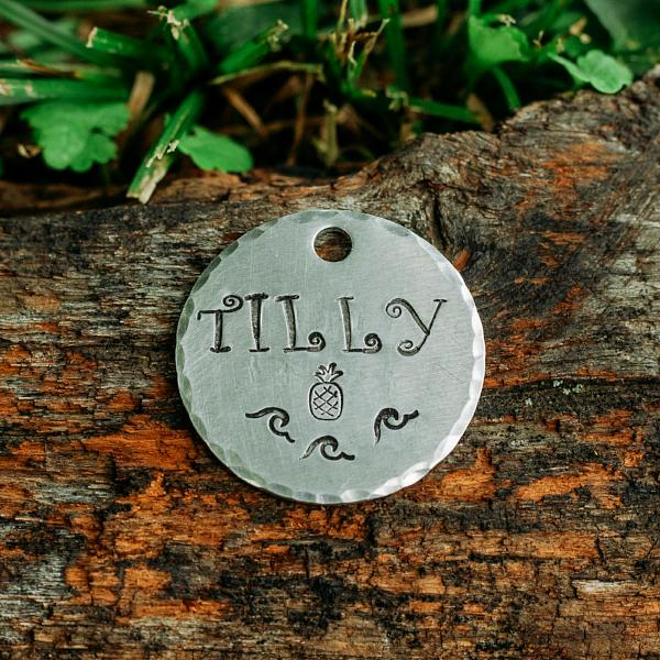 Coco- Summer Collection - Copper Paws Dog Tags