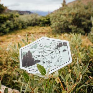Flatirons Vista- Trails & Tails Sticker