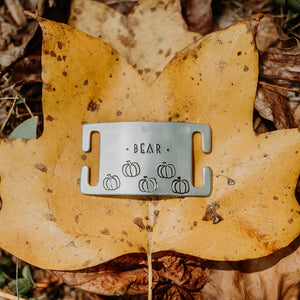 Pumpkin Patch- Wild Slide - Copper Paws Dog Tags