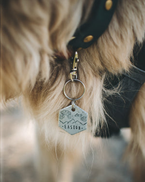 Aero- Simple Style - Copper Paws Dog Tags