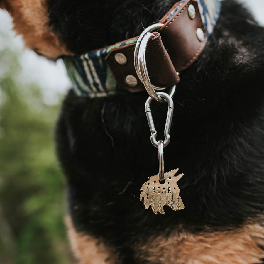 Kylo- Simple Style - Copper Paws Dog Tags