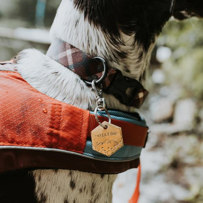 Maia- Spring Collection - Copper Paws Dog Tags