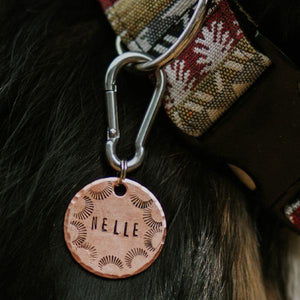 Silver Carabiner Clip - Copper Paws Dog Tags