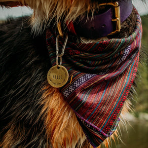 Ezra- Simple Style - Copper Paws Dog Tags