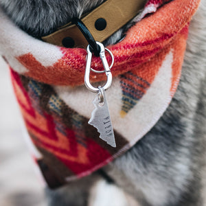 Mountaineer- Simple Style - Copper Paws Dog Tags