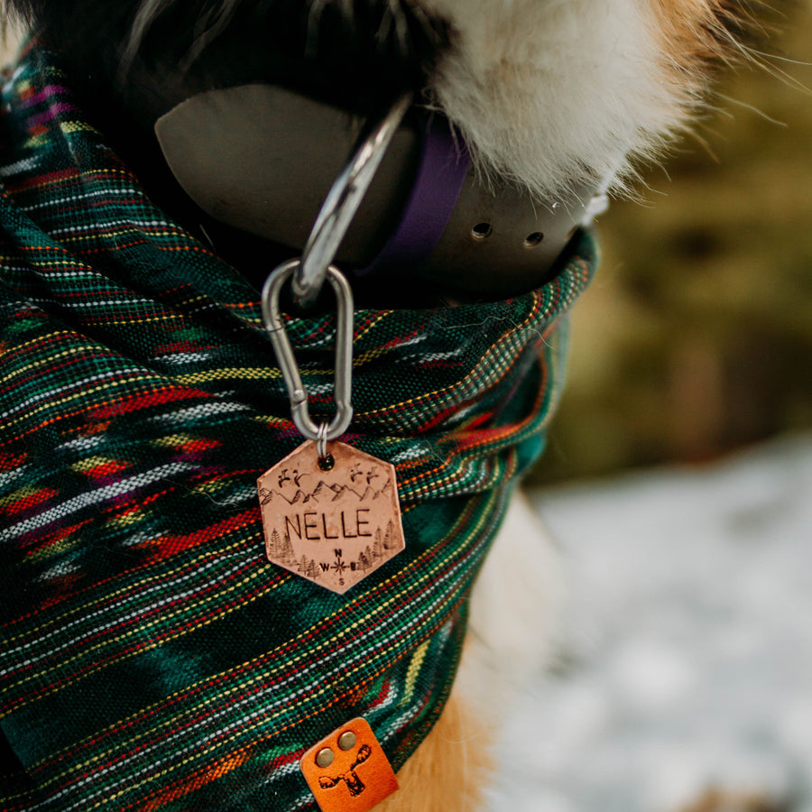 Scout- Simple Style - Copper Paws Dog Tags