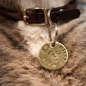 Under the Sea- Kitty Tag - Copper Paws Dog Tags