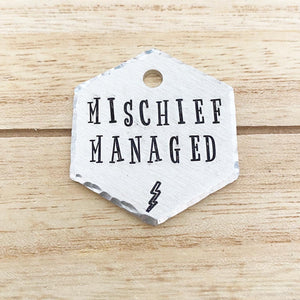 Mischief Managed- Fandom Series