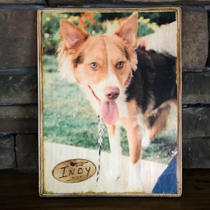 Wooden Pet Photo - Copper Paws Dog Tags