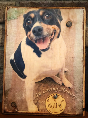 Wooden Pet Photo