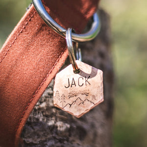 Alpha- Simple Style - Copper Paws Dog Tags