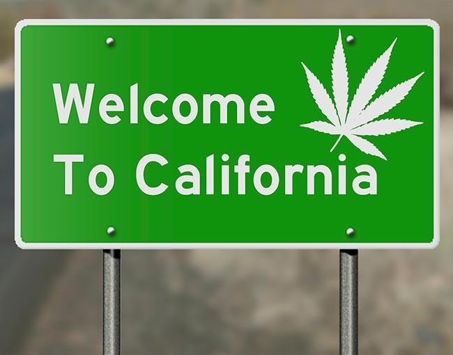 "What Does Legalization In California Mean For The Booming Cannabis Industry & The Dissolving ""Stoner"" Stereotype?"