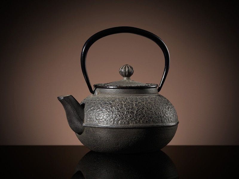 TWG Tea Hanami Teapot in Brown (500ml)