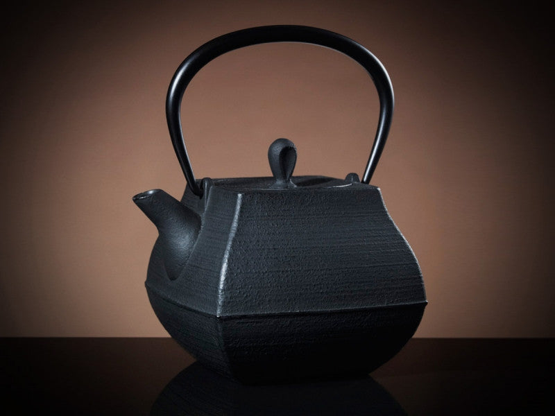 TWG Tea Ryoanji Teapot in Black (700ml)