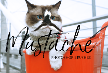 50 Mustache Photoshop Brushes