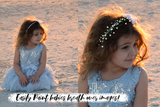 Baby's Breath Photoshop Design Kit - Photohack Lovers