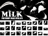 Milk Splash Photoshop Brushes