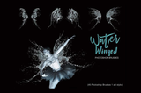 Water Fairy Wings Photoshop Brushes