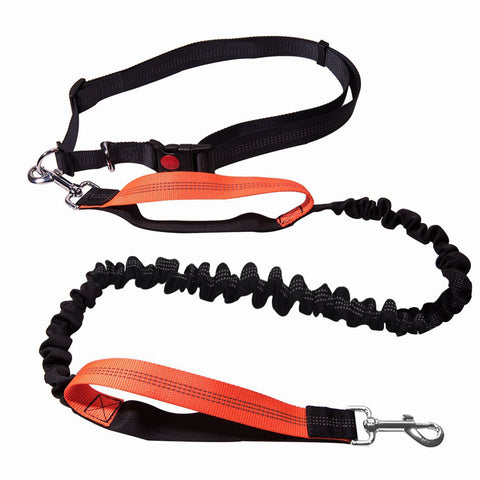 Elastic Running Dog Leash with Waist Belt