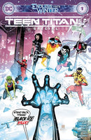 Teen Titans Endless Winter Special