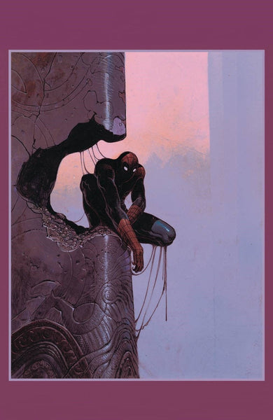 AMAZING SPIDER-MAN 800 MOEBIUS 1:100 INCENTIVE RATIO VARIANT!