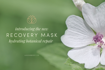 Introducing the Hydrating and Repairing Recovery Mask