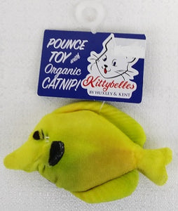 Kittybelles Yellow Tang