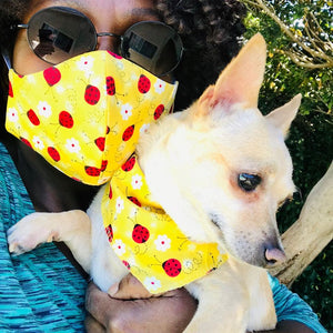 LADYBUGS! - FUN HOOMAN 'MUZZLE' and PUP SCARF COMBO!