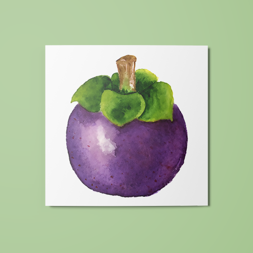 Mangosteen Temporary Tattoo