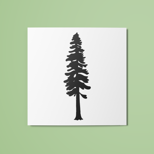 Tall Tree Temporary Tattoo