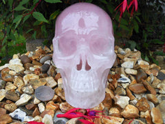 Rose Quartz Crystal Skull 6.7""