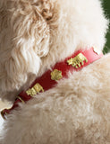 Medium Traditional Swiss Dog Collar
