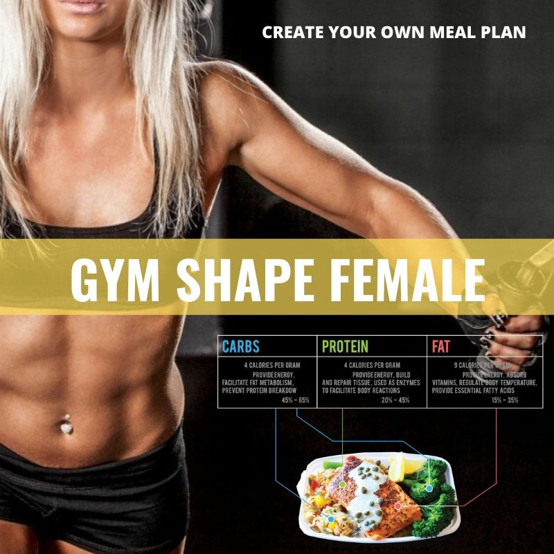 GYM Shape Female* - Papagaio Health Cafe