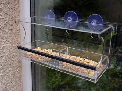Setting Up a Window Bird Feeder Camera