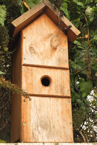 Best bird box
