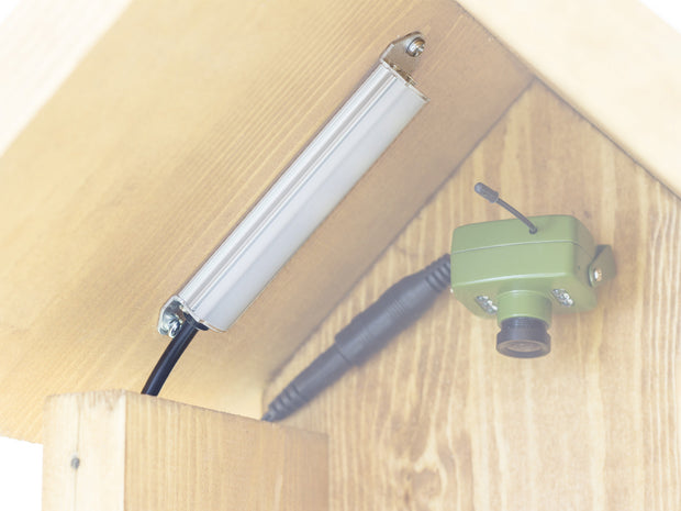 Daytime LED Lamp for Bird Boxes and Hedgehog Homes